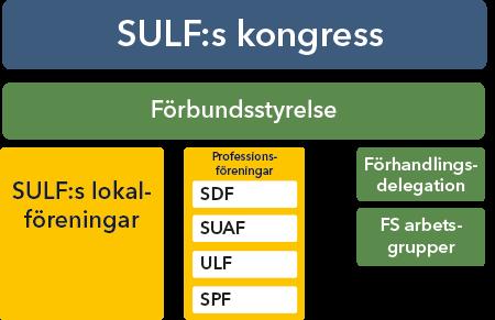 SULFs organisation